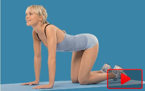 Übungen-für-den-Rücken